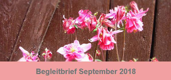 Begleitbrief_Eva Terhorst